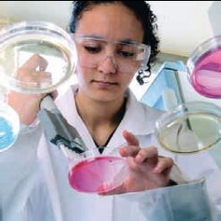 métiers-des-BIOTECHNOLOGIES-ET-DES-LABORATOIRES-3