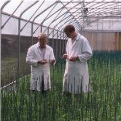 metier-production-vegetale-3